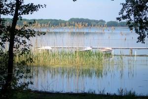 """""""Arendsee (reed, boats)"""" von de:Benutzer:jeydie. Eigene Aufnahme vom Mai 2005.). Lizenziert unter CC BY-SA 3.0 über Wikimedia Commons"""
